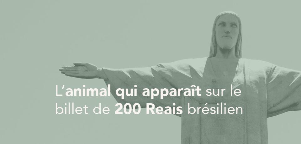 L'animal qui apparait sur le nouveau billet de 200 Reais brésilien